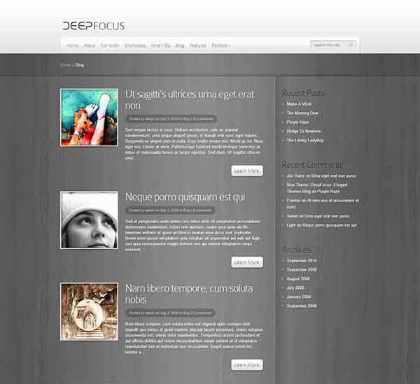 Elegant Themes DeepFocus WordPress Theme - ThemeCrack