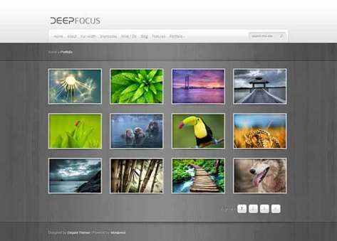 DeepFocus - Portfolio